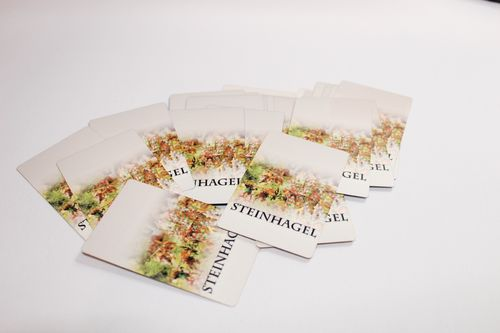 Steinhagel Card Deck for 1-4 Player (32 Cards)